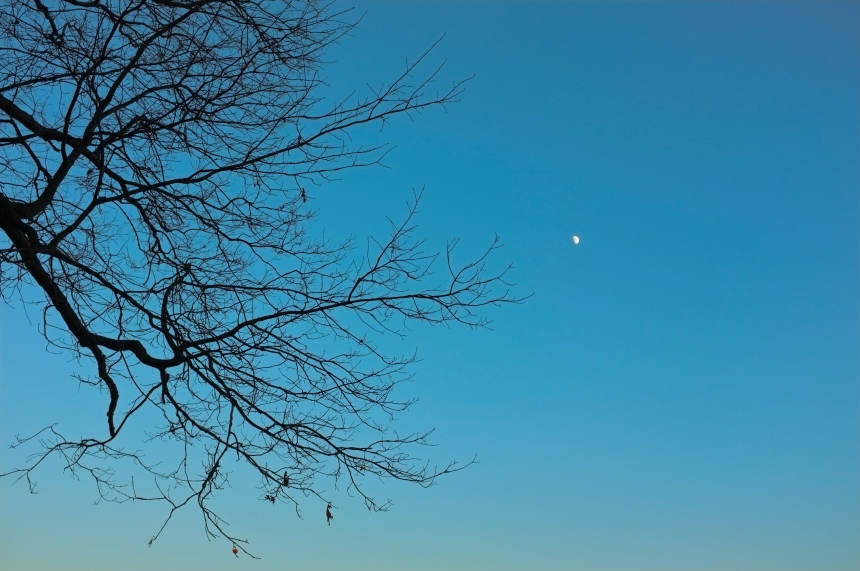 Moonrise in the Hudson Valley