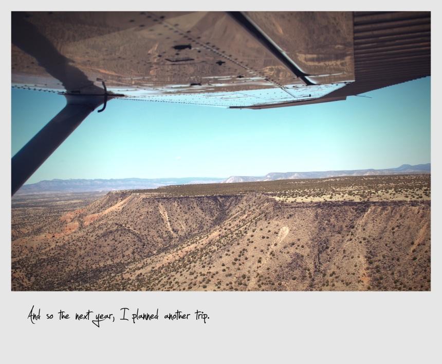 Southwest Safari tour